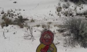 Greisen Family - Flat Jesus at White Sands National Monument (New Mexico) - 1